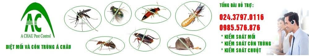 Á Châu diệt mối và côn trùng